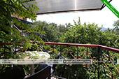 Двухкомнатный Номер - Частный дом Ясон - Коктебель, Феодосия