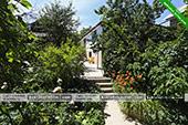 Двор - частный дом на ул. Айвазовского 7 в Коктебеле, Феодосия