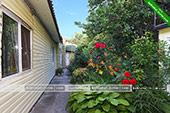 Цветы во дворе - частный сектор на Калинина 9 в Коктебеле - Феодосия
