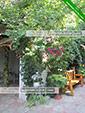 Двор - гостевой дом Панорама - Коктебель, Феодосия