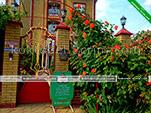При входе - гостевой дом Фаворит в Коктебеле - Феодосия