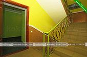 Лестница - Гостевой дом Зеленый рай в Коктебеле - Феодосия