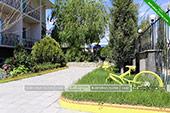 Двор - Гостевой дом Зеленый рай в Коктебеле - Феодосия