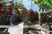 Территория - Гостевой дом Юлия в Коктебеле - Крым