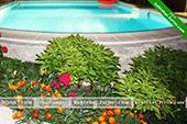 Вечерний бассейн - Вилла Реприза в Коктебеле, Феодосия