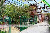 Двор - Частный сектор на Стамова 12 в Коктебеле, Феодосия