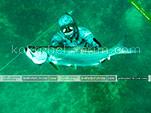 Подводная охота в Коктебеле