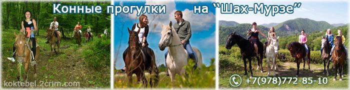 Конные прогулки - Орджоникидзе - Шах-Мурза