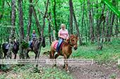 Конные прогулки - Коктебель