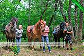 Конные прогулки - Коктебель - Шах-Мурза