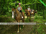 Конные прогулки - Орджоникидзе - Шах-Мурза в Старом Крыму